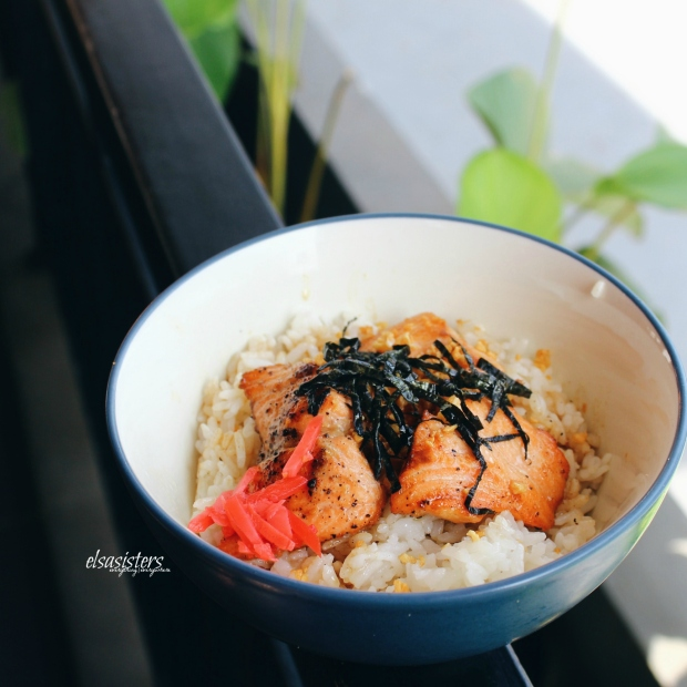 Salmon Shoyu Don, 48k